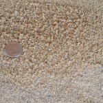 Mortar Sand - Washed Sand Used with Cement also for Sand Boxes & Horseshoe Pits