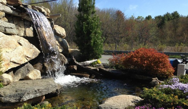 Pond & Water Features (1)