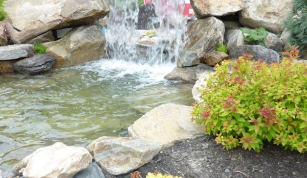 Pond & Water Features (3)