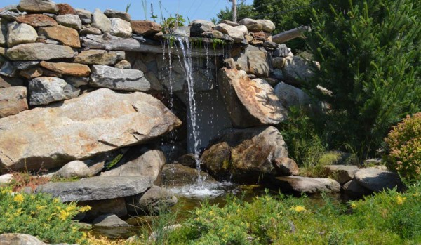 Pond & Water Features (8)